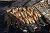Барабулька (султанка) черноморская, средняя 9-10см, фото 4