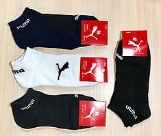 Носки мужские спортивные летние сетка хлопок Puma Турция размер 41-45 ассорти
