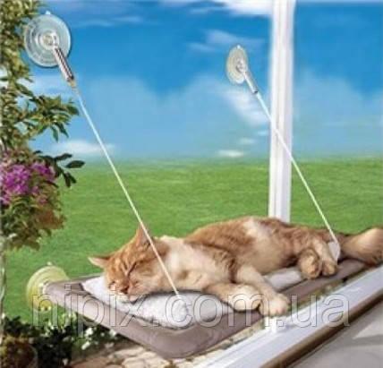 Віконна ліжко для кота