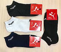 Носки спортивные летние сетка хлопок PUMA Турция размер 36-40 ассорти