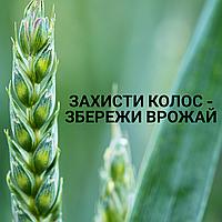 Захисти колос – збережи врожай!