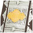 Требник Перта Могили в шкіряній палітурці з накладками з патинованого срібла і золота, фото 6