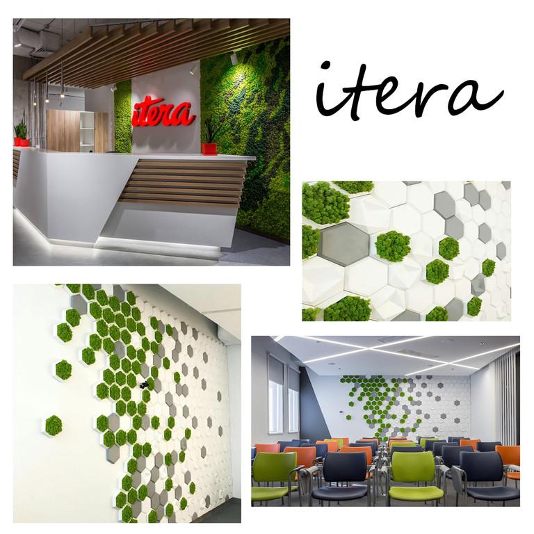 Озеленение и плитка для компании Itera