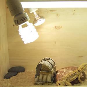 освещение и обогрев для террариума