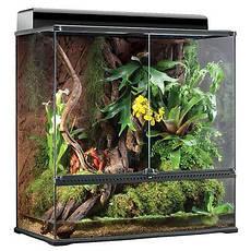 Растения, декорации и наполнители для террариума