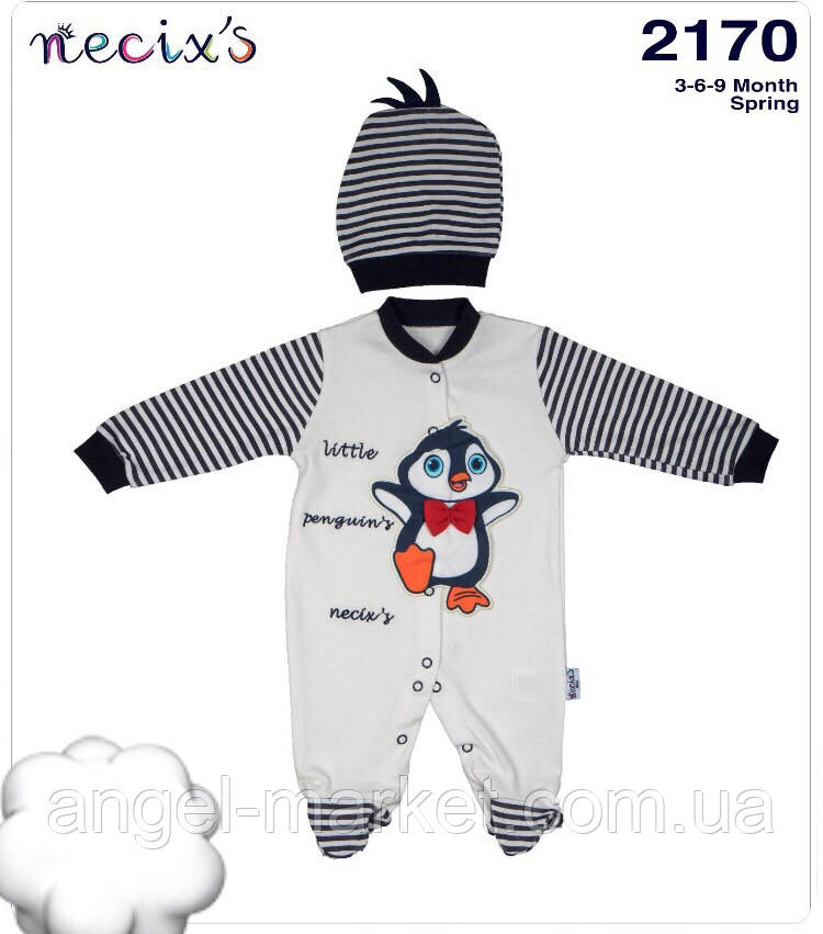 Комплект для мальчика (3-6-9 месяцев)