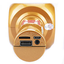 ☜Беспроводной микрофон Micgeek WS-1816 Горчичный с блютуз TF/USB/FM радио 1800 мАч караоке музыкальный, фото 3