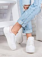 Белые кожаные кеды женские на шнуровке oc6870