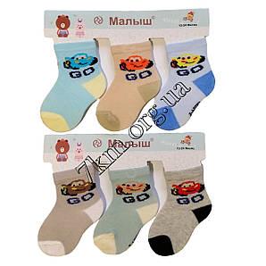 Носки детские для мальчиков Baby Малыш 0-6 месяцев Оптом CA204-2