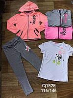 Трикотажный костюм 3 в 1 для девочек оптом, Sincere, 116-146 см,  № CJ-1825, фото 1