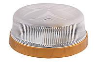 Настінний світильник ERKA 1102-G 26 W, E27 прозорий