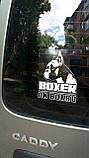 Наклейка на авто / машину Русский черный терьер на борту (Russian Black Terrier On Board), фото 4