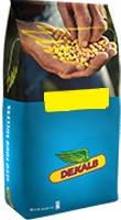 Семена кукурузы ДКС 2971