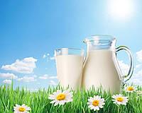 Пищевой ароматизатор Молоко 1 л
