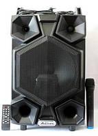Аккумуляторная колонка Meirende UF-AR12CK-DT USB/FM/Bluetooth с микрофоном профессиональная акустика