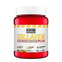 Коллаген UNS Collagen Plus зі смаком полуниці (450 гр)