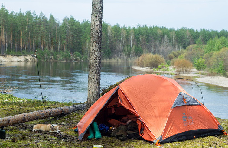 Намет Tramp Wild 2м, TRT-047.02. Палатка Tramp. Палатка туристическая. Намет туристичний