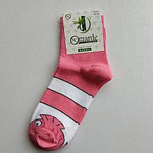 Шкарпетки жіночі рожеві з принтом розмір 36-40
