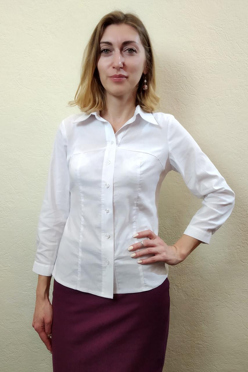 911be9615693 Классическая женская рубашка с рельефными швами Р48