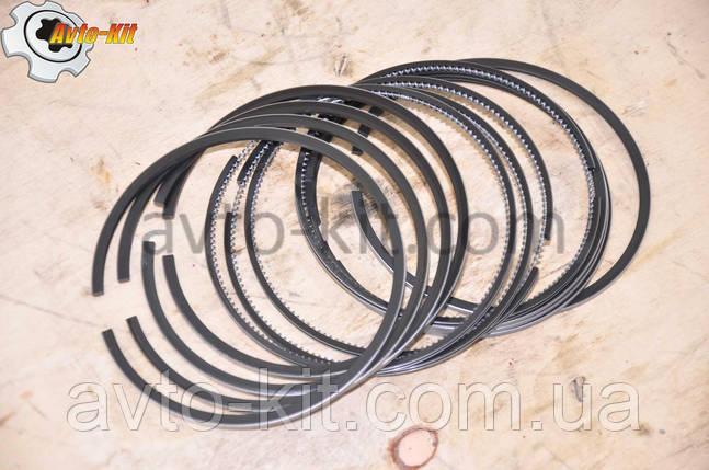 Кольца поршневые FAW 1061 ФАВ 1061 (4,75 л), фото 2