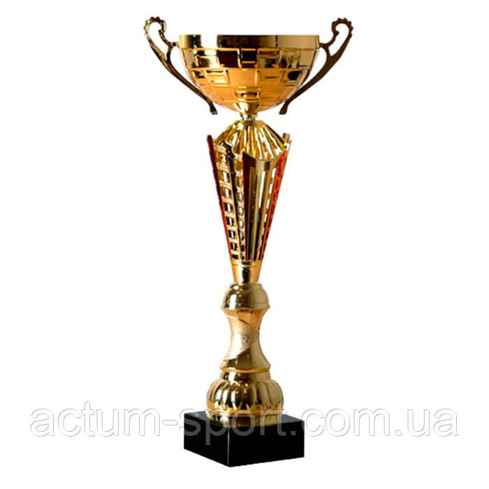 Кубок наградной 43 см.