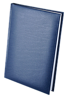 Ежедневник недатированный А5 EXPERT BUROMAX BM.2004