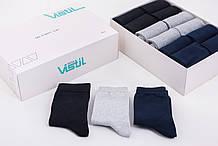 Комплект чоловічих шкарпеток VISTIL 24-пари