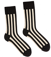 Шкарпетки Sammy Icon Strip 40-46, фото 1