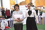 Эксклюзивные бейджи / украшения на грудь для судей / экспертов выставок собак / кошек, фото 5