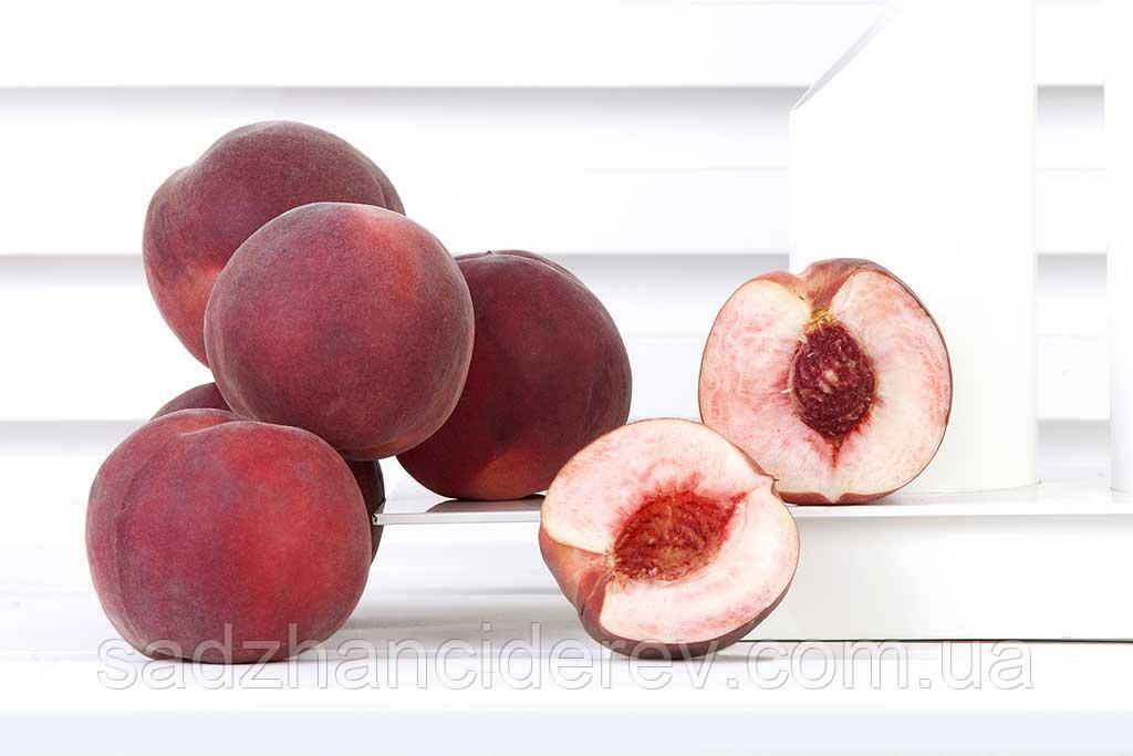 Саджанці персика Фіделія (Fidelia, Фиделия)