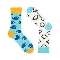 Шкарпетки Sammy Icon Alboa 40-46, фото 1