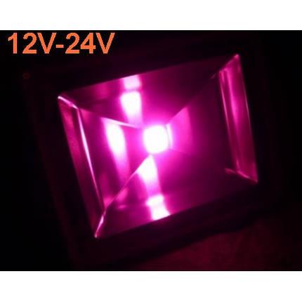 Светодиодный фито прожектор 50W 12-24VDC IP65 (full spectrum led) Код.59566, фото 2