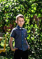 Тенниска Армани, одежда для мальчиков 92-128