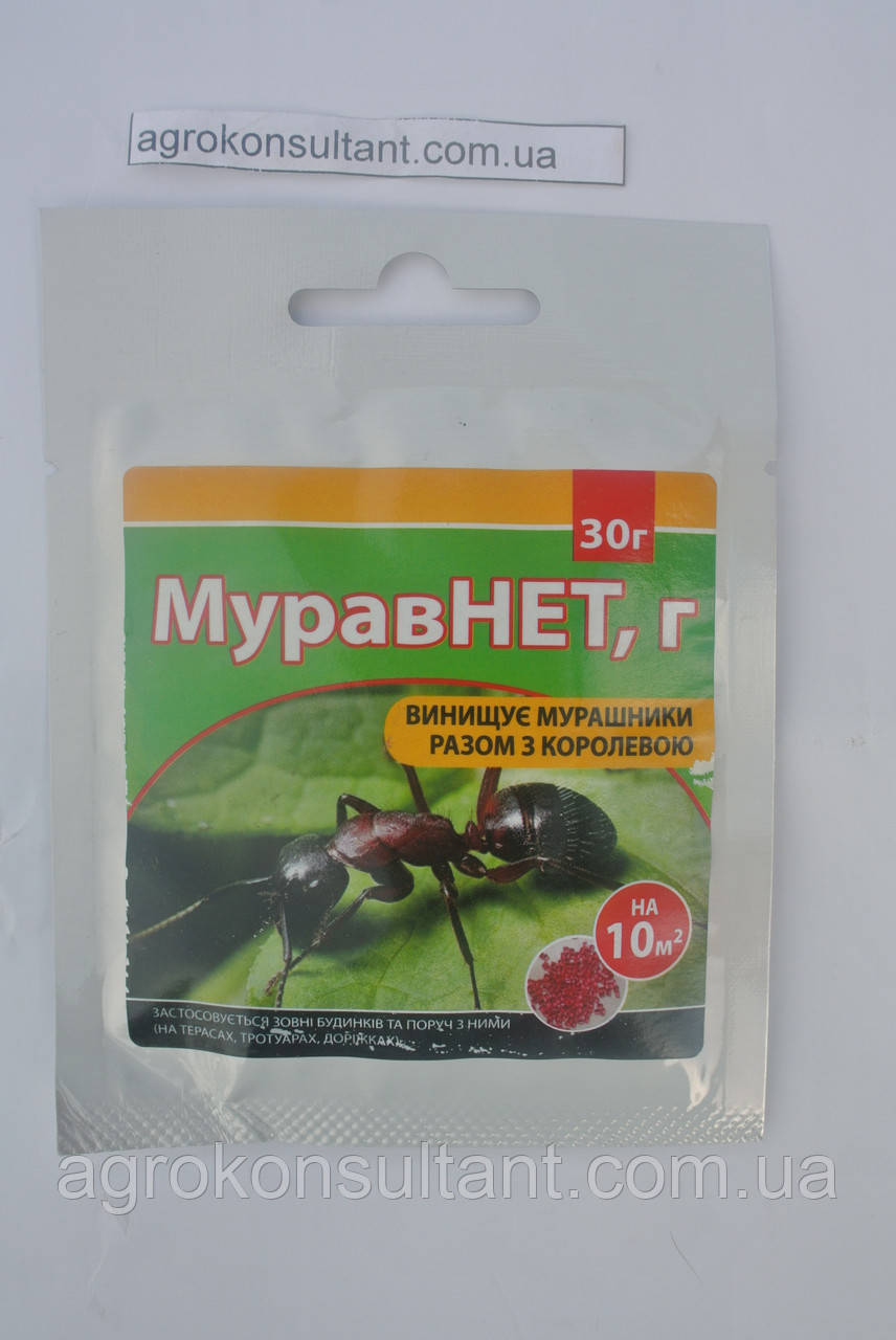 МуравНет, 30 г — препарат от муравьев.