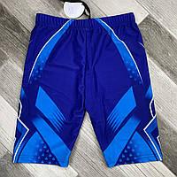 Плавки шорты купальные мужские Paidi, размеры 48-52, синие, 701