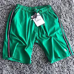 Шорти мужские летние пляжные черные MONCLER зеленые. Живое фото