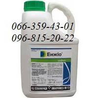 Инсектицид Енжіо 247 SC ( Энжио )