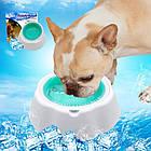 Охлаждающая миска для воды для домашних животных Frosty Bowl, фото 3