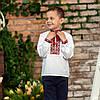 Вишиванка для хлопчика з червоним орнаментом, фото 7