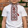 Футболка с вышивкой для мальчика, фото 3