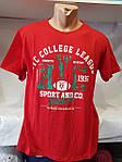 Футболка мужская Батал, мужские футболки больших размеров, фото 7