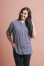"""Блуза женская """"Красотка"""". От производителя - швейная фабрика."""