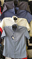 Рубашка мужская ANG 45710/45715 норма и батал лён без ликры