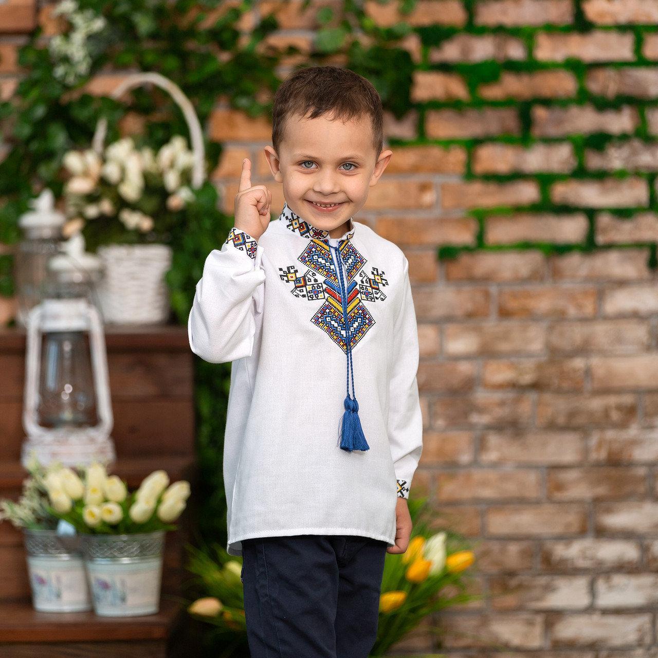 Вишита сорочка для хлопчика з яскравим орнаментом Доля