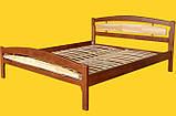 Ліжко Модерн-2, ТИС, фото 2