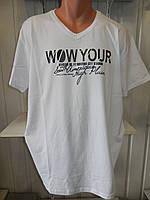 Футболка мужская VIA MONTE WOW YORK батал, стрейч котон  004\ купить футболку мужскую оптом
