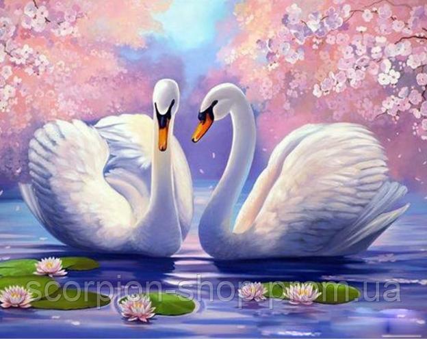 Картина по номерам «Два лебедя» (40*30 см)