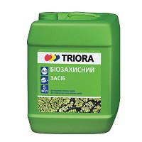 Биозащита Triora 1 л