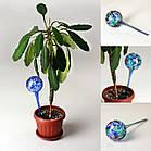 Шары для полива растений Аква Глоб | лейка колба Aqua Globe | автополив цветов, фото 9