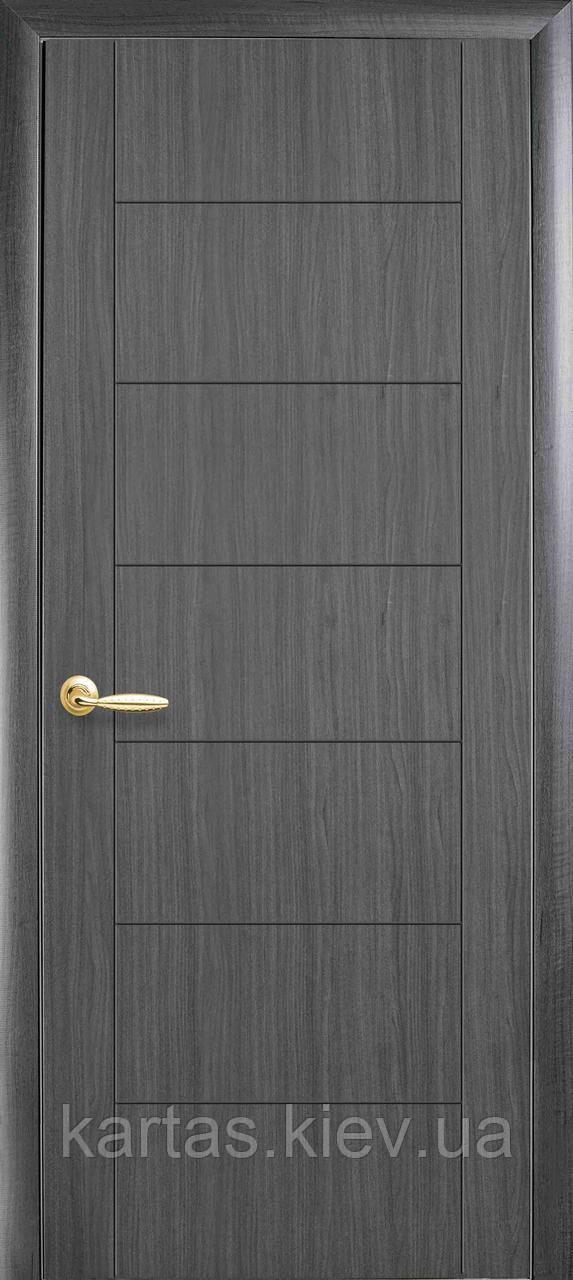 Дверное полотно Ника глухое с гравировкой Silver
